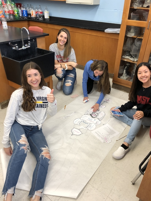 Anatomy and physiology students preparing for their final dissection by building a life size recreation of the human body.